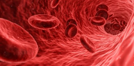 red blood cells, cancer sceening test